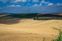 Moravian Tuscany Kyjov. Moravian Tuscany landscape, south Moravia, Czech republic royalty free stock image