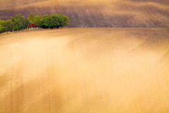 Moravian wavy fields. Stock Images