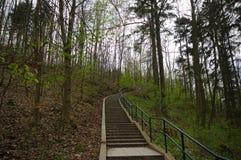 Moravski Kras, republika czech Zdjęcie Royalty Free