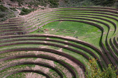 Moray - agriculture in Sacred Valley Stock Image