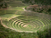 Moray. Ancient inca circular terraces. Sacred valley, Peru, South America Stock Photography