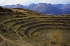 Moray - archäologische Fundstätte des Inkas in Perus heiligem Tal stockbilder