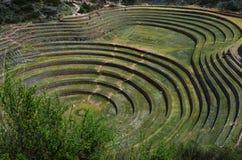 Moray - archäologische Fundstätte des Inkas in Perus heiligem Tal lizenzfreie stockfotos