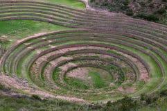 Moray - bezienswaardigheid in Peru Stock Foto's