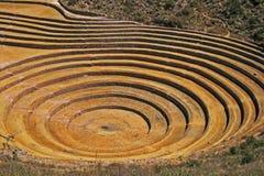Moray, Cusco, Перу стоковая фотография