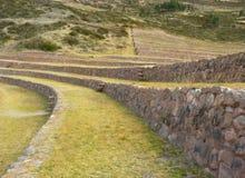 Moray, Cusco, Perù. Immagini Stock Libere da Diritti