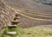 Moray, Cusco, Perù. Fotografia Stock Libera da Diritti