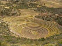 Moray,Cusco, Peru. Royalty Free Stock Images