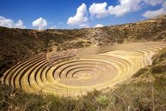 Moray, Cusco, Peru. Agricultural terraces at Moray, Cusco, Peru Stock Photos