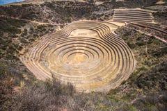Moray, eine archäologische Fundstätte nahe Cusco, Peru Lizenzfreie Stockfotografie