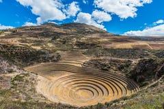 Moray fördärvar peruanen Anderna Cuzco Peru Arkivbilder