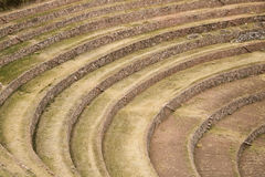 Moray terraces, Cusco Royalty Free Stock Images
