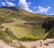Moray Inca fördärvar i Peru arkivbilder
