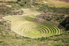Moray inca ruins Royalty Free Stock Photography