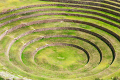 Moray inca ruins Royalty Free Stock Image