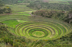 Moray Inca's ruins, Peru.  Royalty Free Stock Image