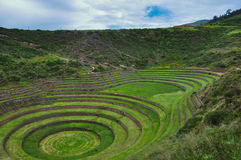 Moray Inca's ruins, Peru Royalty Free Stock Photography