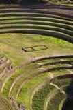 Moray Inca terraces - Urubamba - Peru Stock Photography