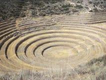 Moray- Muyu Uray, Maras District, Cusco. Agricultural terraces stock photos