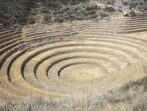 Moray Muyu Uray, secteur de Maras, Cusco Terrasses agricoles photos stock