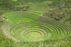 Moray Ruin in Cusco, Peru stockfotografie