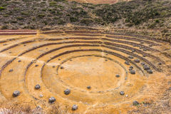 Moray ruiniert peruanische Anden Cuzco Peru stockbilder