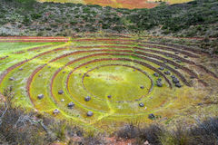 Moray Ruins in Peru. Concentric circles of the Incan ruins of Moray near Cuzco, Peru Royalty Free Stock Photography