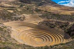 Moray ruins peruvian Andes Cuzco Peru. Moray, Incas ruins in the peruvian Andes at Cuzco Peru royalty free stock image