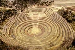 Moray, sito di coltivation del ` s di inca, Perù Immagini Stock