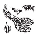 Moray tattoo in Maori style. Vector illustration EPS10 Stock Photos