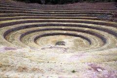 Moray terraces Stock Photo
