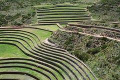 Moray, valle sacra delle inche, Perù Fotografia Stock Libera da Diritti