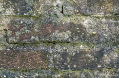 Morbid brick wall. Part of a morbid brick wall Stock Photos