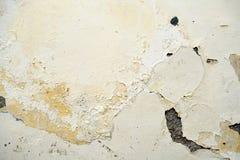 Morbid white-yellow stucco wall. Closeup of a morbid white-yellow stucco wall Stock Photo