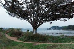 Morbihan coast Royalty Free Stock Photos