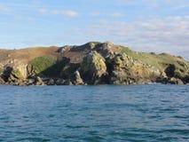 Morbihan - das Ile Zusatz-Oiseaux und Boot stockfoto