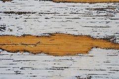 Morceau de bois Images libres de droits