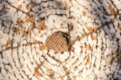 Morceau de coton, fond Photo stock