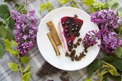 Morceau de gâteau au fromage délicieux 12 Images libres de droits