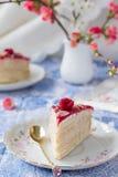 Morceau de gâteau de crêpe de mascarpone Photos stock