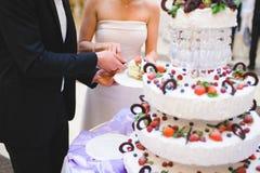 Morceau de gâteau de fruit Photo stock