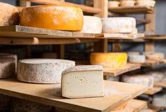 Morceau de grande tête de fromage de chèvre Images libres de droits