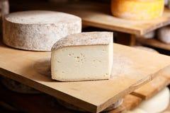 Morceau de grande tête de fromage de chèvre Image stock