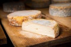 Morceau de jeune tête molle de fromage de chèvre avec le moule Photos libres de droits