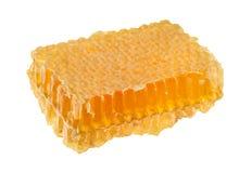 Morceau de miel des nids d'abeilles d'isolement sur le blanc Photographie stock