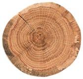Morceau de section transversale en bois circulaire avec des fissures et des anneaux annuels Texture de tranche de chêne d'isoleme images stock