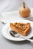 Morceau de tarte de potiron avec des noix Image libre de droits
