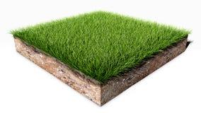 Morceau de terre d'herbe verte illustration stock