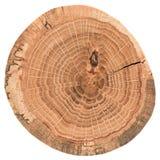 Morceau de tronçon en bois circulaire avec des fissures et des anneaux annuels Texture de dalle de chêne d'isolement sur le fond  images libres de droits