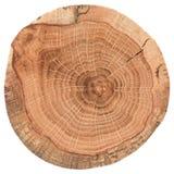 Morceau de tronçon en bois circulaire avec des fissures et des anneaux de croissance Texture de dalle de chêne d'isolement sur le photographie stock